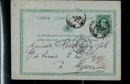 Carte N° 8. Obl. BRUXELLES 02/11/1876 Pour Lyon (France) - Postcards [1871-09]