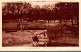 75 PARIS 1931 EXPOSITION COLONIALE INTERNATIONALE JARDIN ZOOLOGIQUE L'ENCLOS DES ZEBRES - Exposiciones