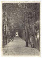 Reims - Momignies - Pensionnat St J. B. De La Salle - Charmille - Momignies