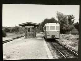 Photographie Originale De J.BAZIN:Réseau Breton : Ligne De CARHAIX à GUINGAMP Gare De MOUSTÉRU    En 1958 - Trenes