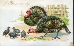 66394  Tuks's Post Card Thanksgiving Day, Embossed Card,carte Gaufree,relief,geprägte Postkarte,turkey Truthahn,turquie - Thanksgiving