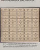 Liechtenstein: 1918/1921. Vollständiger, Gummierter Bogen Mit Den Einschreibzettel Von TRIESEN Mit D - Verzamelingen