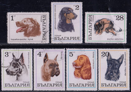 ! BULGARIA - Various Dogs / Set Of 7 Used Stamps (k4447) - Dogs
