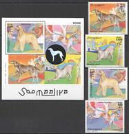 NW1401 2003 SOMALIA SOOMAALIYA FAUNA PETS DOGS 1SET+1BL MNH - Dogs