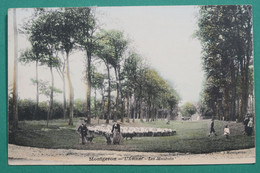 Montgeron  -  Les Moutons - Montgeron
