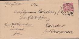 DR 33 A EF, Auf Brief Mit Hufeisenstempel: Demmin 30.MÄRZ 1876 - Lettres & Documents