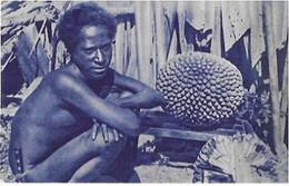 MSSIONS  D 'OCEANIE . TYPE D INDIGENE - Samoa