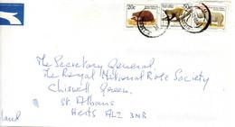 AFRIQUE DU SUD. N°811Aa De 1998 Sur Enveloppe Ayant Circulé. Hérisson. - Other