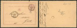 """EP Au Type 5ctm Mauve Obl Double Cercle (DCb) """"Ostende"""" (1875) + Boite Rurale """"E"""" (Leffinghe) > Gand - Postcards [1871-09]"""