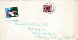 AFRIQUE DU SUD. Timbre Sur Enveloppe Ayant Circulé En 1966. Zébu. - Other