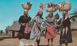 Haitian Marketwoman In Furcy--striving To Lead Goat(Haiti) Scan - Other