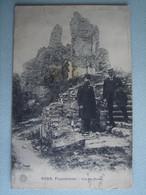 Franchimont - Vue Des Ruines - Philippeville