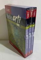I100313 DVD - Bigiano / Mattirolo - Belle Arti (3 Dischi) - Petrini SIGILLATO - Documentari
