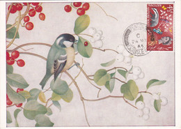 Carte Maximum Card Oiseau Bird Grande Bretagne Mésange - Maximum Cards