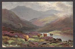 PL176/ Edgar LONGSTAFFE, *Highlands, Glen Nevis*, Ed. R. Tuck & Sons, *Oilette* N°6200 - Peintures & Tableaux