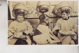 FANTASIA  CANE DONNE PARRUCCHIERE EDITA BIZARR BERLIN SERIE DE AGOSTINI RIPRODUZIONE - Dressed Animals