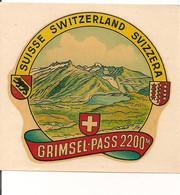 Ref AlbMar : Ecusson Autocollant Sticker Année 50 60 Décalcomanie Suisse Grimsel Pass - Pegatinas