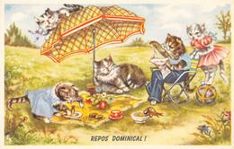 Chats - Chat - Chatons - Repos Dominical - Pique-nique Du Dimanche - Parasol, Ballon - Herbe - Lecture Du Journal - Dressed Animals
