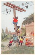 Chats - Chat - Chatons - Poteau électrique - Hirondelle - Graffitis - Dressed Animals
