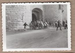 PHOTO 30 - AIGUES-MORTES - TB PLAN Abrivado CAMARGUE Troupeau Sortant Des Remparts CHEVAUX Gardians - Aigues-Mortes