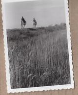 PHOTO 13 - CAMARGUE - Beau PLAN De 2 GARDIANS à Cheval Sur Une Digue - Unclassified