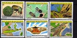 Haute-Volta N° 535 / 40 XX   Faune : Insectes,  Les 6 Valeurs Sans Charnière, TB - Haute-Volta (1958-1984)
