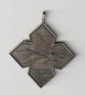 Wandel-medaille Duinenmars (NL) - Other