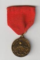 Wandel-medaille R.K.W.S.V. De Vierdaagse 1952 Oranjestad Breda (NL) - Other