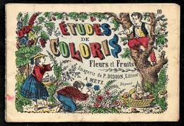 """Imagerie (populaire) De P. DIDION Editeur 57 METZ Petit Livret """"Etude De Coloris"""" à Colorier FLEURS Et FRUITS - Other"""