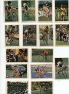CYCLISME   TOUR DE FRANCE  Lot De 15 Cromos Espagnoles Ases Del Ciclismo - Cycling