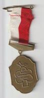 Wandel-medaille 23e Avond Vierdaagse 1982 Helmond (NL) - Other