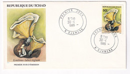 Tchad, Mushrooms, First Day Cover Used, - Paddestoelen