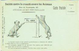 Société Contre La Cruauté Envers Les Animaux.  Chien/Chat. Bruxelles-Anderlecht. Illustrateur. - Unclassified