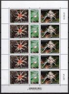 New Caledonia 2021 Sheetlet  MNH Champignons Mushrooms Champignon Mushroom - Paddestoelen