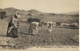 *Types Paysans* -En Provence Côte D' Azur  Lot De 2 Cartes Postales - Les Glaneuses, Cueillette Des Violettes -voir Scan - Cultivation
