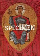 Salvator Mundi Mozaïk In De Kapel Van De Salvatorianen @ Heverlee - Leuven