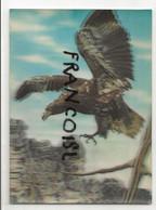 Aigle. Eagle. Carte StéréoscopiqueToppan - Stereoskopie