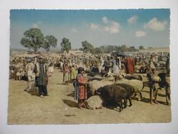 AFGHANISTAN KABUL Stockyard - Market Foire Aux Bestiaux - Voir Au Dos Timbre - Afghanistan