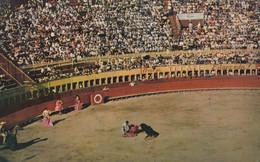 Mexico Tijuana - Toros Corrida Bullfight Arena 1960 - Mexico