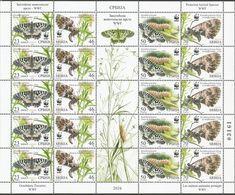 SRB 2016-657-60 WWF BUTTERFLY, SERBIA, MS, MNH - Serbia
