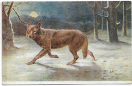 L30F305 - Wild Animals - The Common Wolf - Animaux Sauvages, Le Loup - Raphaël Tuck, Oilette N°3210 - Altri