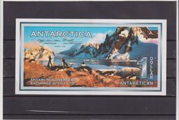 ANTARCTICA 1996, 1 DOLLAR (1ST ISSUE), AUNC - Other