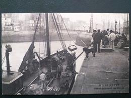 76 ,le Havre ,le Débarquement De Marée En 1911..........beau Plan - Autres