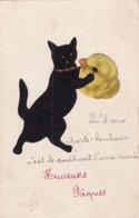 CHAT NOIR EN MOLESKINE - Cats