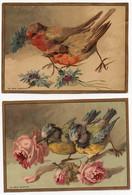 Grande CHROMO Au Bon Marché Lemercier Oiseaux Rouges-gorges Moineaux Mésanges Fleurs (3 Chromos) - Au Bon Marché