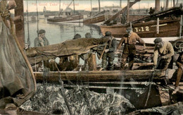 Great Britain - Peterhead - A GOod Take Fishing - 1906 - Unclassified