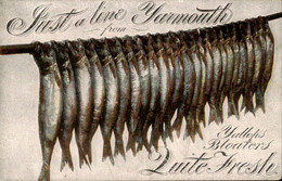 Great Britain - Yarmouth - Zuite Fresh - 1915 - Non Classés