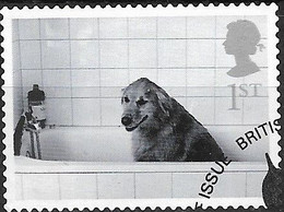 GREAT BRITAIN 2001 Cats And Dogs. - (1st) - Dog In Bath FU - Gebraucht