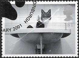 GREAT BRITAIN 2001 Cats And Dogs. - (1st) - Cat In Washbasin FU - Gebraucht