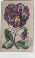 LA BRETAGNE  UNE PENSEE DE BRETAGNE - Bretagne